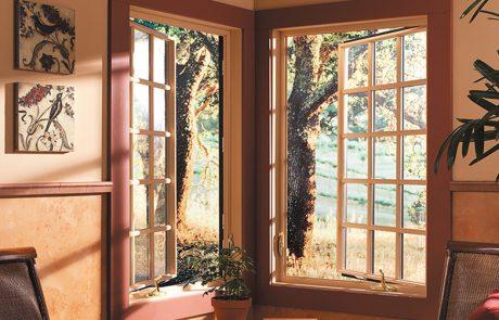 Wood Clad Windows
